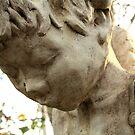 Angel frozen in stone. by Angela Rafter