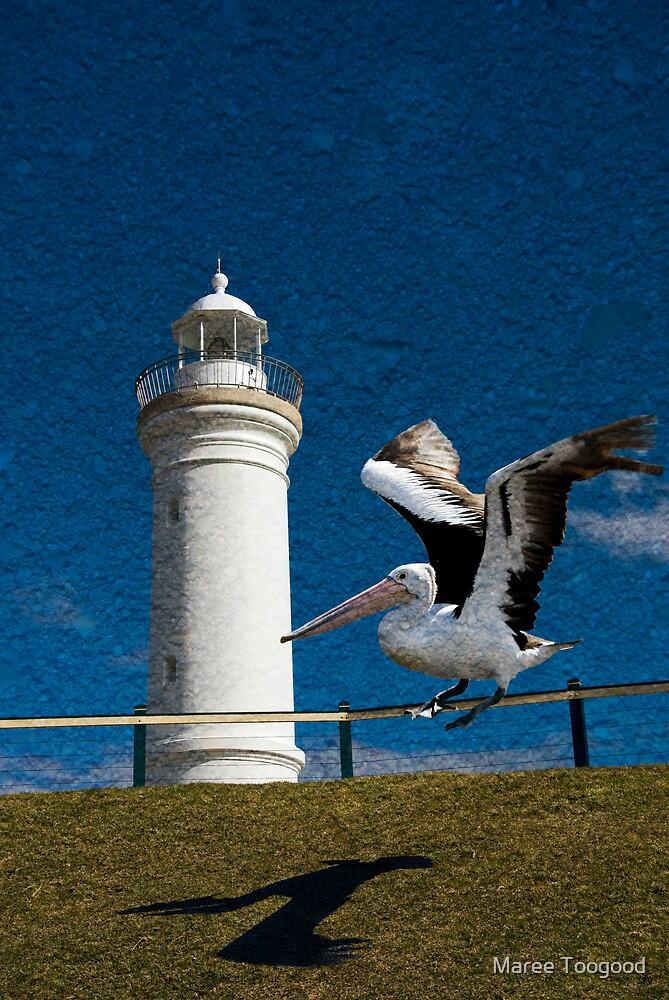 Lighthouse Landing by Maree Toogood