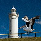 Lighthouse Landing by Maree Toogood