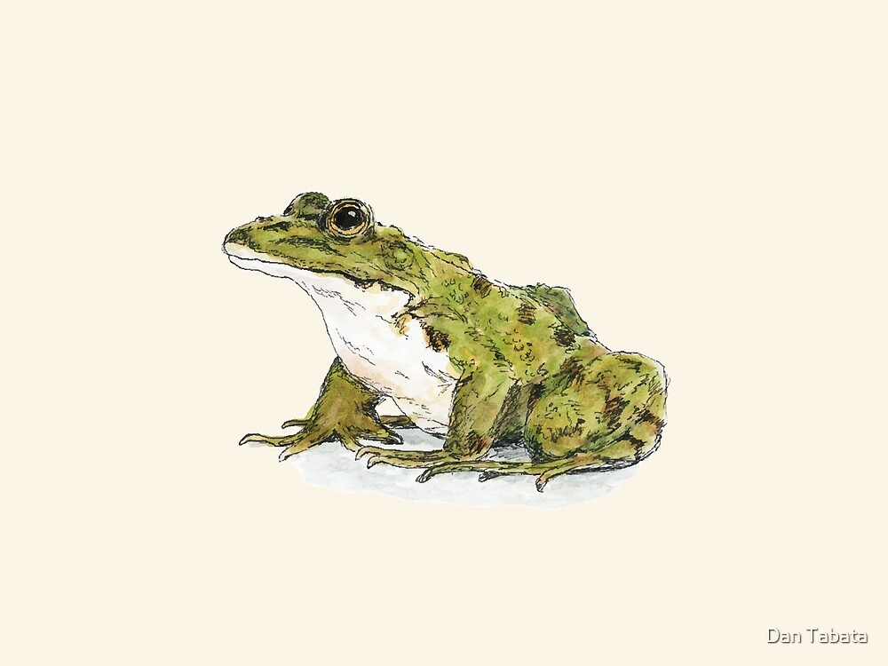 Frog by Dan Tabata