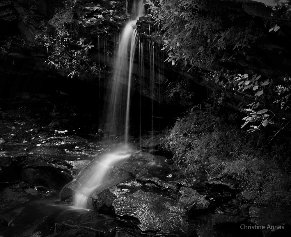 Monotone Splash by Christine Annas