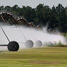 Watering The Lawn by ericb