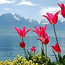 Tulips on the lakeside by Arie Koene