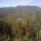 The Fall Leaves by kfurniz