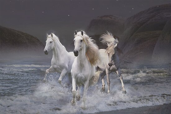 Wild horses on the beach posters by rok e redbubble wild horses on the beach publicscrutiny Gallery