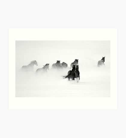 After the Blizzard B&W Art Print