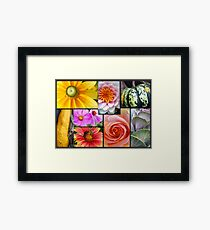 Gardener's Delight Framed Print