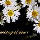 Glenda's Daisies 5 by Gary Boudreau