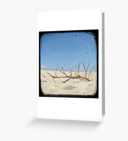 Grassy Dunes - TTV #4 Greeting Card