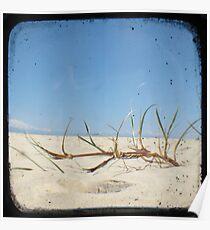 Grassy Dunes - TTV #4 Poster