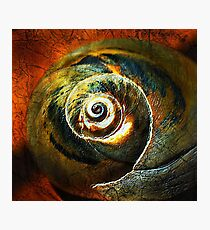 moon spiral Photographic Print
