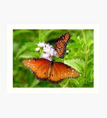 Pollination Series ~ 5 Art Print