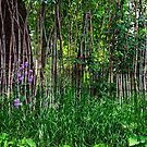 Stick Fence Green Grass and Purple Flowers by Bo Insogna