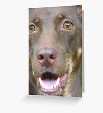Shaggy.. Greeting Card