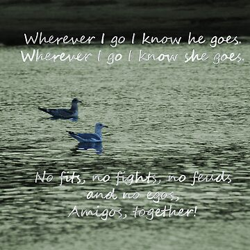 Together, Wherever We Go...Two Seagull Cards by Shutterbug-csg