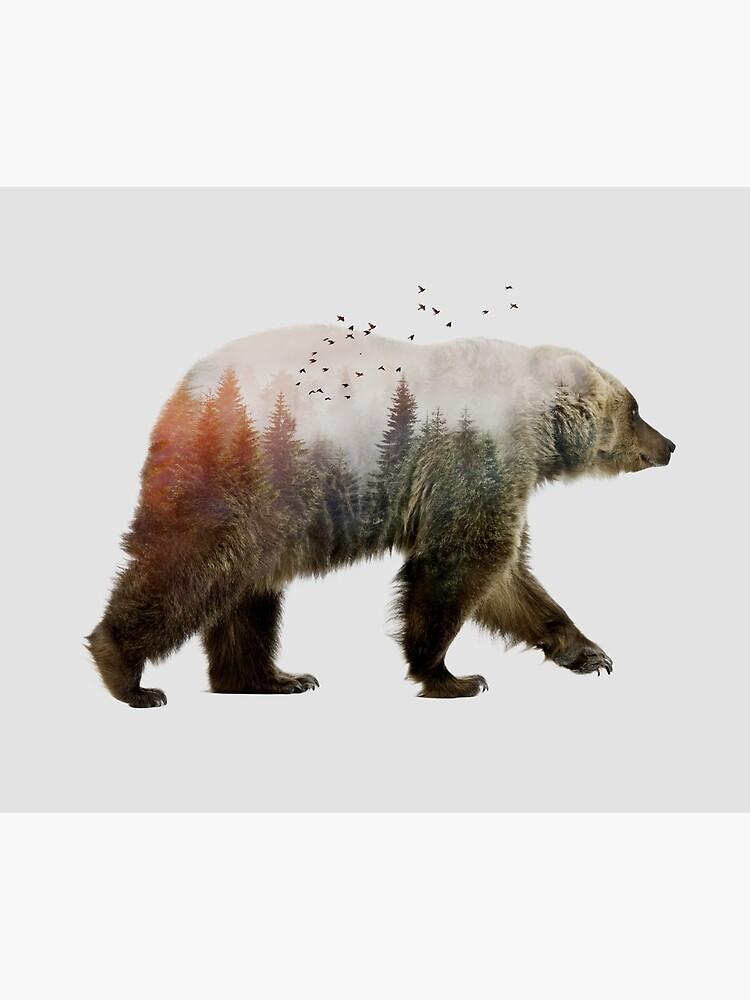 Bear by sokolselmani