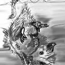Sketchbook Opossum by Astrid Strahm