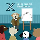 L is for Law X is for eXpert Testimony by vgoodman