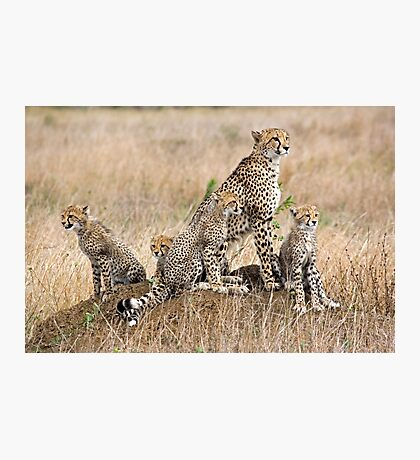 Family Portrait  Photographic Print