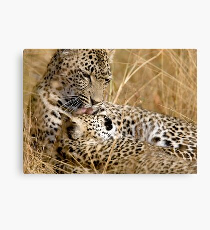 Karula and cub Canvas Print