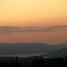 Orange Supreme - Donegal Ireland  by mikequigley