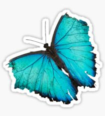 Weathered wings Sticker