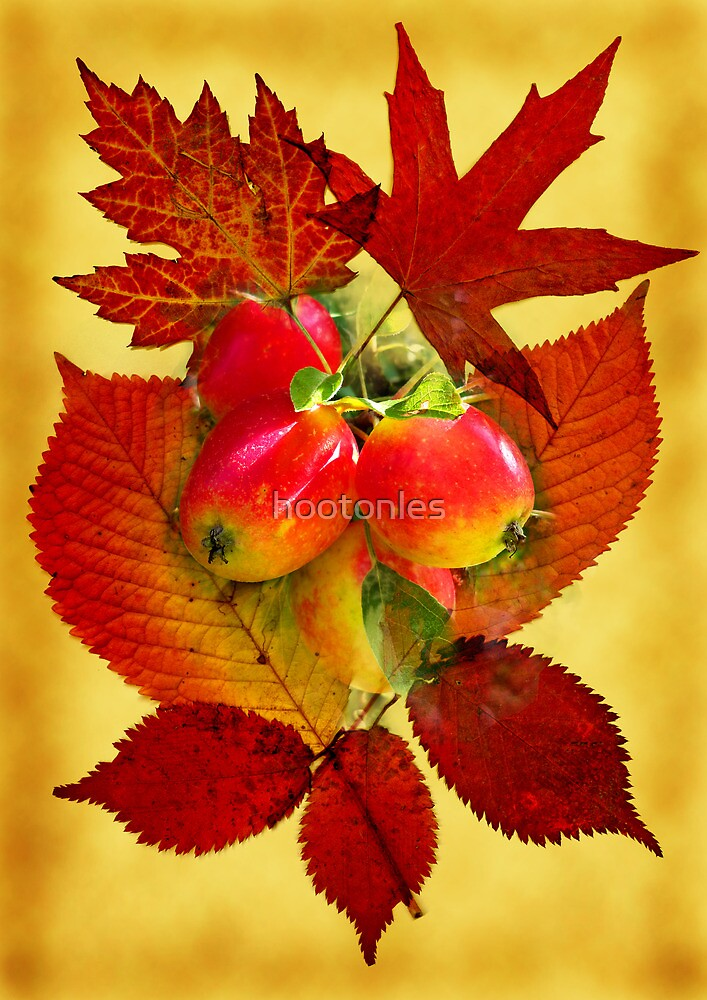 Autumn Leaves & Fruit by hootonles