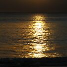 Golden Sunrise on Manly Beach by Janie. D