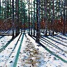 'Into The Woods' by Jerry Kirk