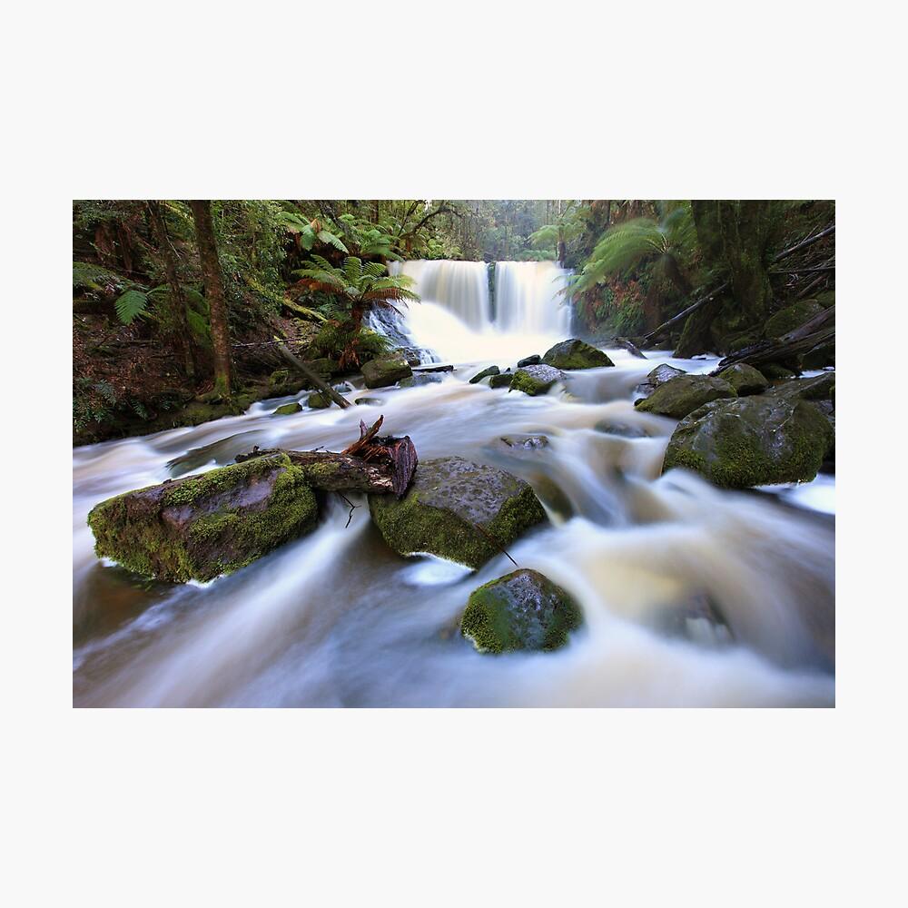 Horseshoe Falls, Tasmania, Australia Photographic Print