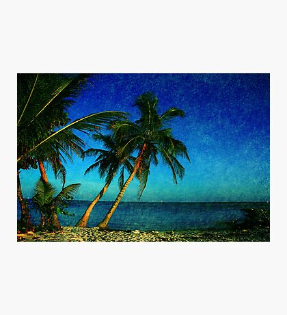 Palm Trees and the Beach in Key West Photographic Print