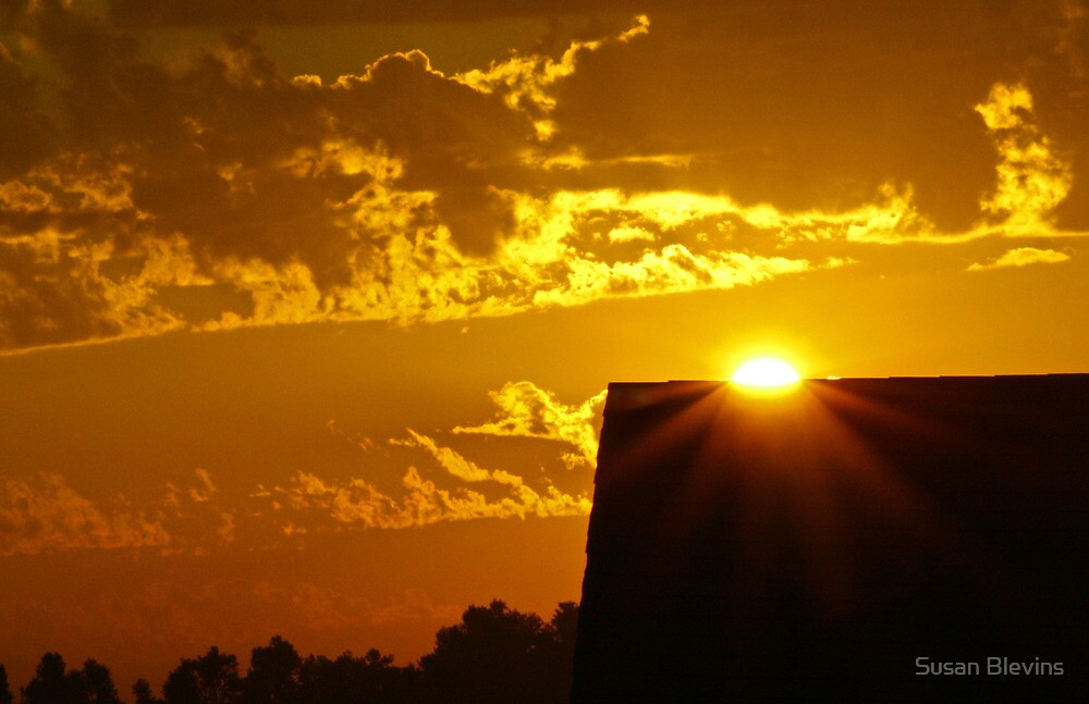 Sunrise over my Neighbor's House by Susan Blevins
