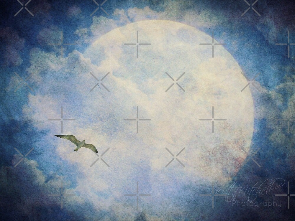 Blue Moon by Scott Mitchell