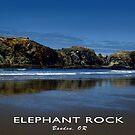 Elephant Rock in Bandon, Oregon by Chrissy Ferguson