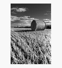 Hay Bale Photographic Print