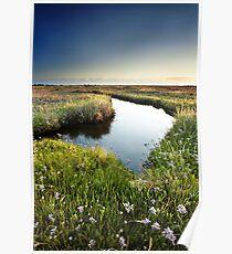 Mirror Mirror on the Marsh Poster