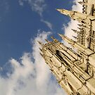 York Minster by maxxx