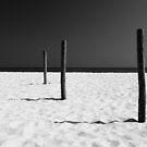 Equilibrium by George Parapadakis ARPS (monocotylidono)