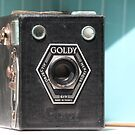 Tools of the Trade ....Goldy  by LynnEngland
