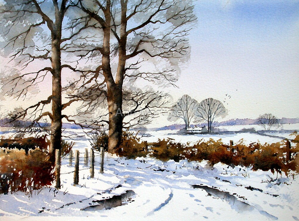 Quot Winter Trees Quot By Ann Mortimer Redbubble