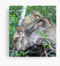 But I Wanted a PlayStation....! Canvas Print