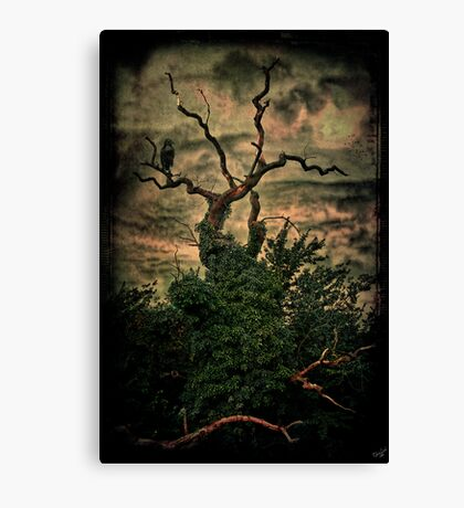 The Raven Tree Canvas Print