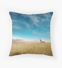 Breaking Bad Desert  Throw Pillow