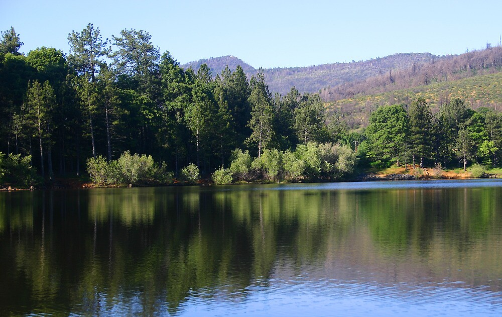 CUYAMACA REFLECTION by fsmitchellphoto