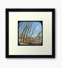 Grassy Dunes - TTV #3 Framed Print