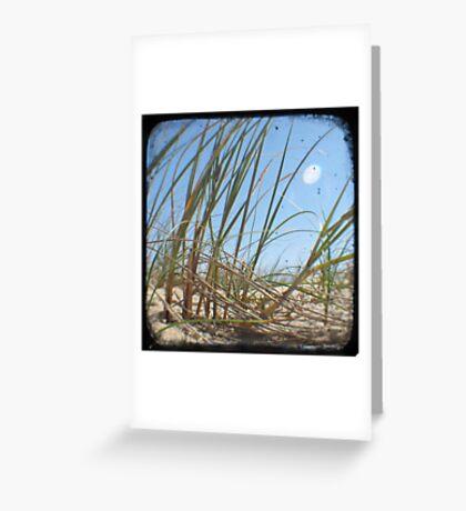 Grassy Dunes - TTV #3 Greeting Card
