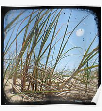 Grassy Dunes - TTV #3 Poster