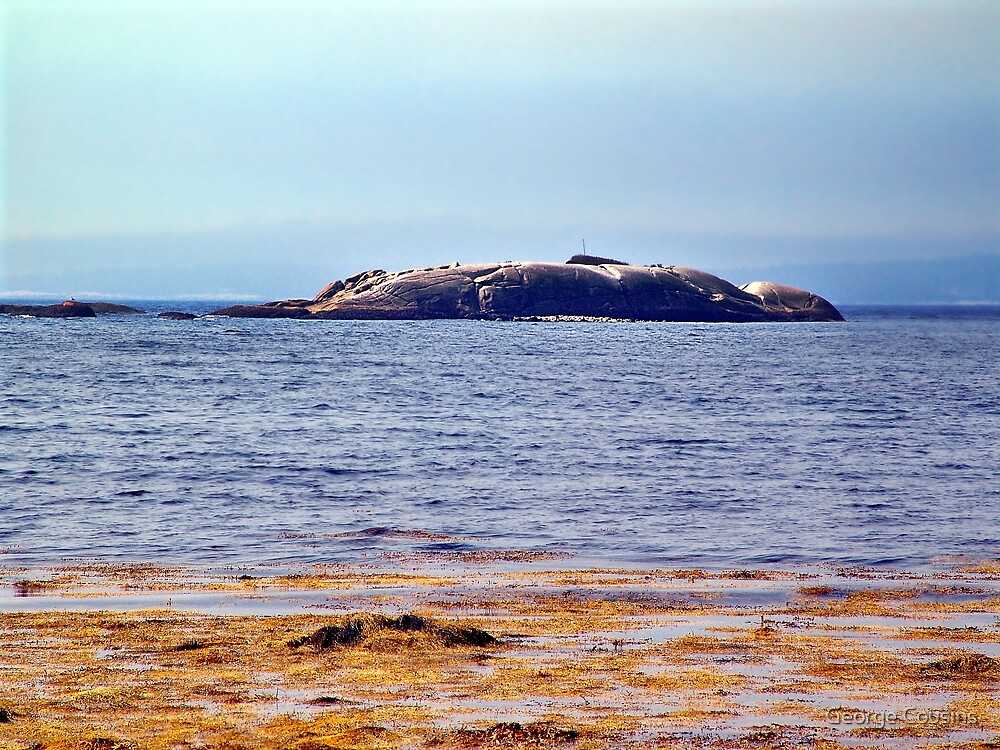 Indian Harbour, Nova Scotia by George Cousins