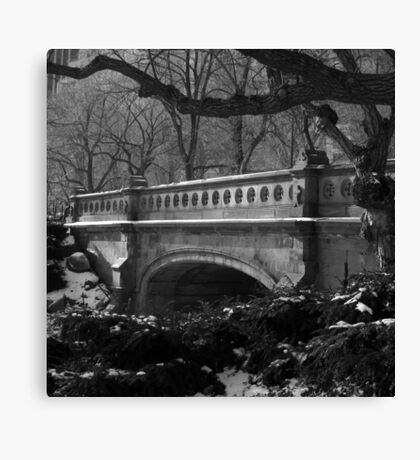 bridge, central park, nyc Canvas Print