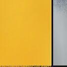 Raining Mondrian by Mautner Design by mautnerdesign
